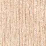 tegels van de Vloer van het Porselein van 60X60cm de Rustieke (F6645)