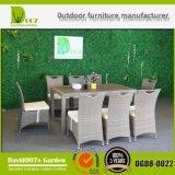 Présidences de meubles de jardin et Tableaux/dinant le jeu
