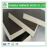 높은 Quality 반대로 Slip Film Faced Plywood 또는 Construction Plywood/Shuttering Plywood