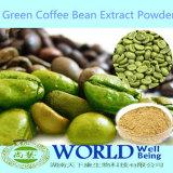 Usine BPF échantillon gratuit de faible poids de la médecine Extrait de café vert acide chlorogénique pur Arabica Extrait de grains de café vert