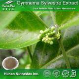 Выдержка Sylvestre Gymnema 100% естественная (кислоты 25% Gymnemic)