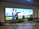 Media de los anuncios al aire libre/rectángulo ligero del LED de la bandera de la flexión de acoplamiento de la cartelera de interior de la tela