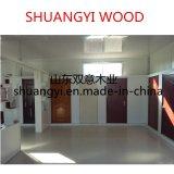100 % de l'intérieur d'entrée de porte en bois massif avec une bonne qualité