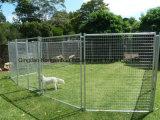 Gaiola ao ar livre enchida galvanizada do cão do engranzamento de fio de Wleded