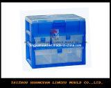 Caixa de organizador de plástico de alta qualidade do Molde (LY-952)