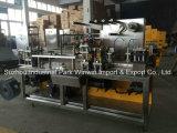 Servolaufwerk-Blasen-Verpackungsmaschine Dpp-180h