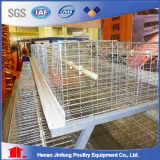 Système automatique de cage de poulet pour la vente