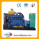 Generator-Set des Gas-800kw (Erdgas und Biogas)