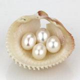 Perla apagado-Redonda de la naturaleza al por mayor/del óvalo/del arroz cultivada de agua dulce de la dimensión de una variable para DIY