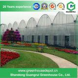 Serre chaude en plastique de plantation végétale de tunnel de Multi-Envergure