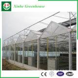 Serra di alluminio d'acciaio galvanizzata di vetro Tempered di Holloe di profilo del TUFFO caldo Grame/