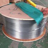 Edelstahl umwickelte (Ring) Rohrleitung/durchlöchern unten Gefäß