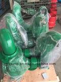 Bomba de água Diesel portátil aprovada do GV