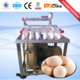 계란 가공 공장을%s 계란 분류 분류 기계