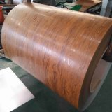 PPGI en bois / bobine d'acier galvanisé prélaqué