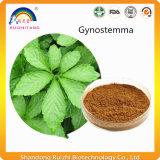 Polvere dell'estratto di Gynostemma Pentaphyllum Jiaogulan
