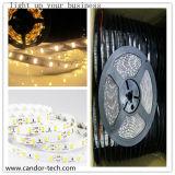 Publicidad de la luz de tiras de la lámpara 2835SMD 24V del tubo del LED