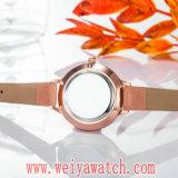 Orologi casuali di modo delle signore del quarzo della cinghia di cuoio (Wy-17028A)
