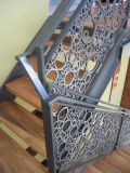 Inferriata della scala dell'acciaio inossidabile con il corrimano