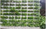 화분 수직 벽 재배자 녹색 벽 재배자 플라스틱 벽 재배자를 거는 다채로운 2개의 포켓