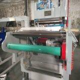 Macchina automatica di Thermoforming del coperchio di plastica piano dell'animale domestico di rettangolo