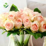Caroline Rose flor artificial para la boda la decoración del hogar