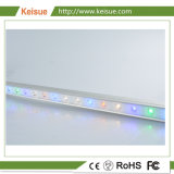 Keisue 전문가 LED는 증가 닭 생산을%s 가볍게 증가한다