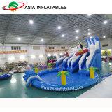 PVC物質的で膨脹可能な水公園のゲーム、プールが付いている膨脹可能なイルカ水スライド