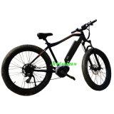 새로운 디자인 최고 질 전기 자전거 350W 전기 자전거