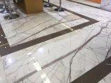 De nieuwe Tegels/de Plakken van de Bevloering Calacatta van de Aankomst Witte Marmeren Purpere Marmeren