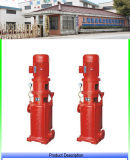 Fábrica Multi-Function Single-Stage da bomba de incêndio direta