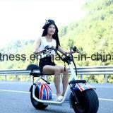 motorino elettrico dell'equilibrio della bicicletta della bici delle rotelle di 18inch 60V12ah Harly due