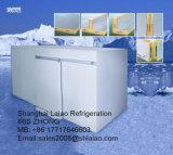 Quarto frio industrial com Copeland Unidade de condensação