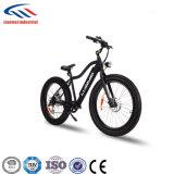 حارّ عمليّة بيع إطار العجلة سمين درّاجة كهربائيّة