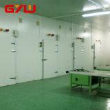 PU-Panel-Kühlraum mit eingehängter Tür