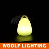 Lampada chiara decorativa di /Desk della lampada della Tabella di colore LED di RGB 16
