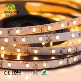 3 anos de garantia 12W Super alta CRI 95+2835 Fita Flexível LED SMD