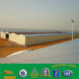 EPS de Bouwmaterialen van het Comité van de Sandwich/Het Huis van de Container voor het Huis van /Prefabricated van de Workshop