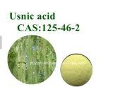 健康機能高い純度のUsnic酸98%の地衣のUsneaのエキス