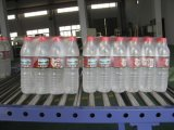 Empaquetadora del agua de botella