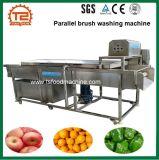 De de parallelle Wasmachine van het borstel Oranje Fruit en Wasmachine van de Aardappel