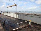 Профессиональное высокое изготовление моста стальной структуры Qualtity (FLM-TR-015)