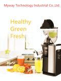 Медленно соковыжималка простая чистка DC здоровые закуски фрукты овощные соки