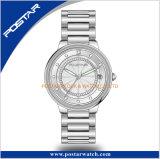 Signora astuta spazzolata orologio dell'incastronatura della cassa di acciaio inossidabile di alta qualità