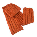 놓이는 뜨개질을 한 모자, 스카프 및 Mitten (JRI006)