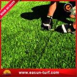 景色のホームのための総合的な草の泥炭