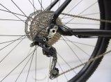 29er Deore 20の速度山の自転車(MTB13)
