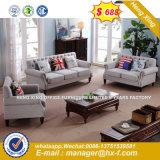 Casa moderna mobília Leahter luxuosa sala de estar sofá (HX-SN8075)