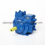 L'essence diesel de haute qualité de la pompe à ailettes