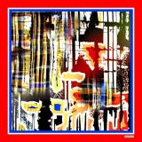 Kundenspezifische Silk Schals des Digital-Drucken-100% (F13-0020)